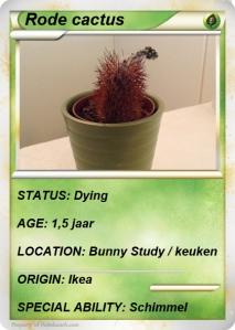 cactus30